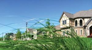 neighborhood-grass-2